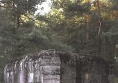 Linia obrony Księży Młyn – Oleśnik